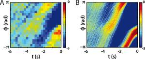 Fig. 4. The emergence of stereotyped behaviors in worm and model phasedynamics.