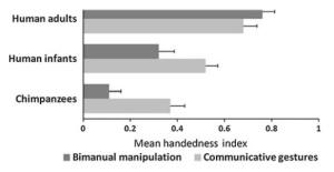 handedness copy