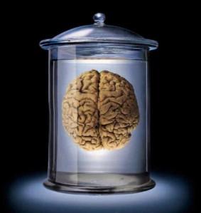 Brain in jar