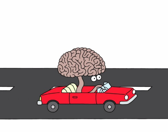 This brain should really be wearing a seatbelt - http://www.geekosystem.com/