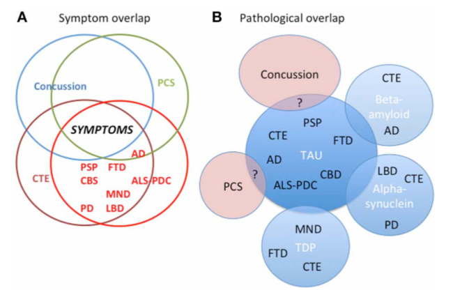 Figure from Tartaglia et al. (2014) showing the overlap of symptoms in different concussion-related and non-concussion-related disorders. The connections between these different disorders is still unclear and the subject of intense ongoing research.