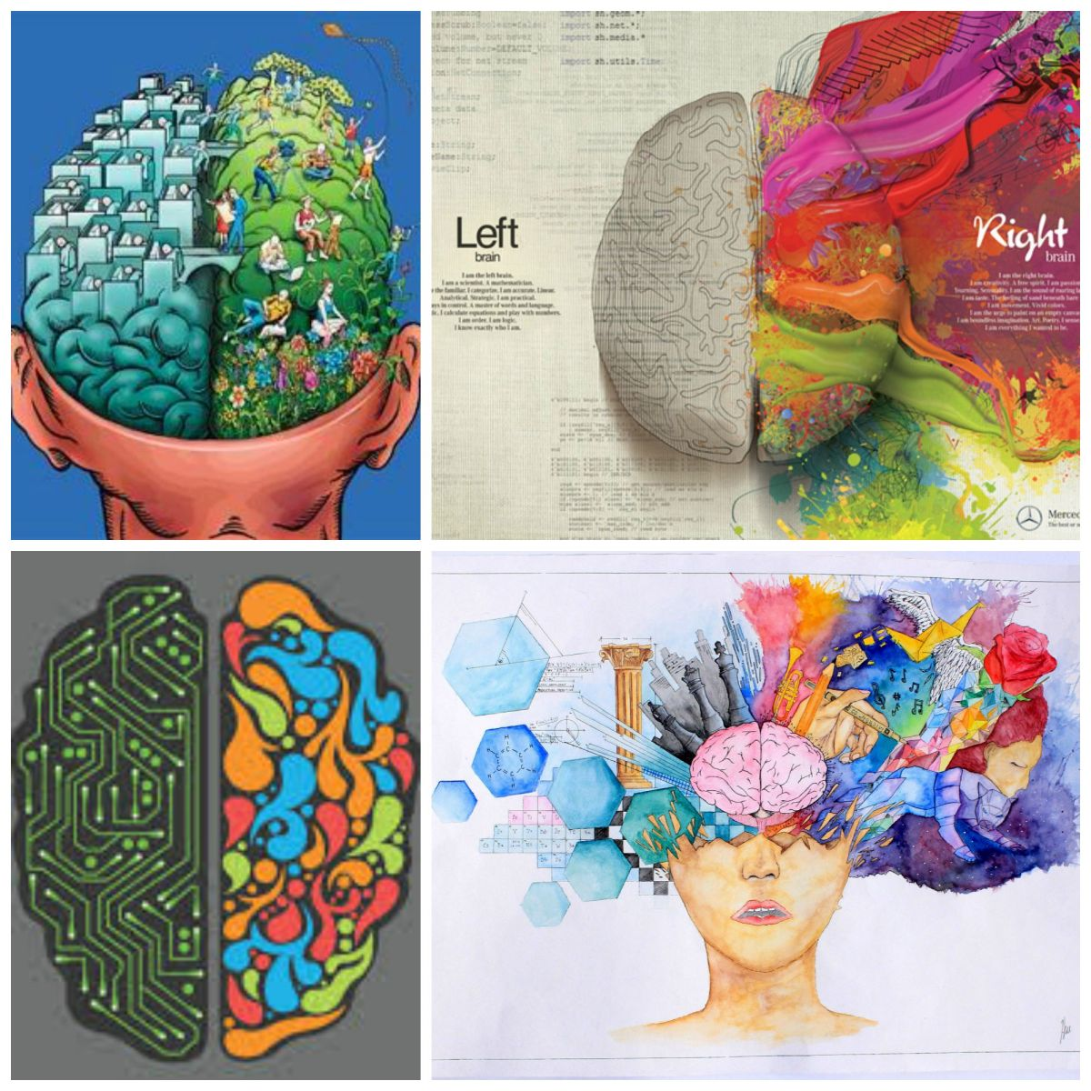 brain creativity behavior Abstract this article outlines a framework of creativity based on functional neuroanatomy recent advances in the field of cognitive neuroscience have identified distinct brain circuits that are involved in specific higher brain functions.
