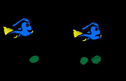 dory schematic