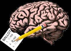 brainballot
