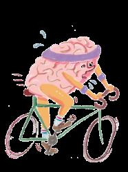 cervell_transparent
