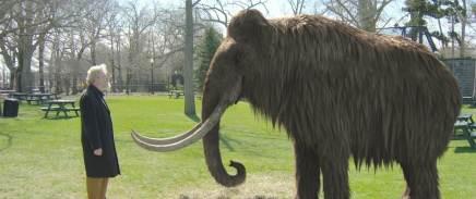 141115-mammoth_17faf73c332f788f46e3fc003893b99d.nbcnews-fp-1240-520.jpg