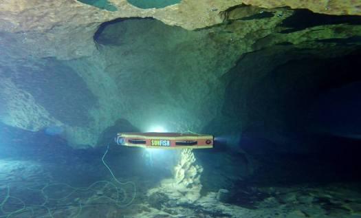 sunfish navigating
